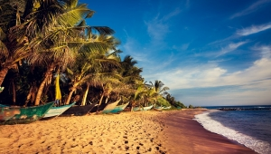 Šri Lanka - ostrvo reka i vodopada
